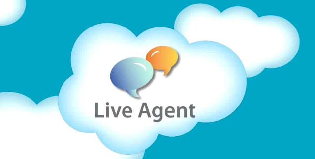 Salesforce Live Agent Chat - Objects