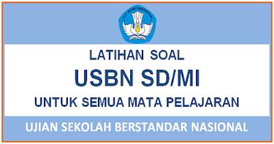 Latihan Soal USBN SD/MI 2018 dan Kunci Jawaban