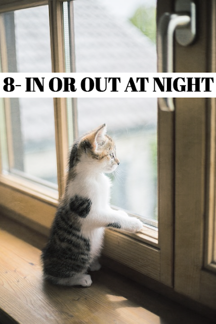 The days of putting the cutout for the night are gone. At nighttime, your cat is more likely to be involved in a fight with another cat or with other predators. In addition, despite there being less traffic at night, it is often faster, representing a serious danger for your cat. For its own safety, keep your cat in after dark. The local wildlife will also benefit from your cat is kept indoors at night. *DARKNESS IS NO DETERRENT With their incredible night vision, cats will still happily venture out after dusk. But many owners prefer to keep their pet in at night.