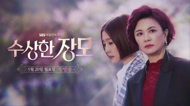 Sinopsis Dan Pemain Shady Mom-in-Law Drama Korea