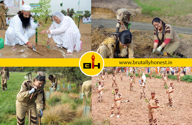 tree plantation dera sacha sauda, saint ram rahim birthday wallpaper, lionheart msg warrior song poster, msg online gurukul poster songs, ijjat ka rakhwala song mp3 download, saint ram rahim birthday greeting, green s welfare force tree plantation
