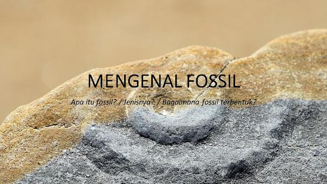 Belajar FOSIL. Definisi / Pengertian Fosil. Jenis umum dari Fosil. Organisme / Mahluk Hidup yang Terfosilkan. Proses - Proses Pembentukan Fosil. - Permineralisasi, Petrifikasi, Rekristalisasi, Cast and Mold, Karbonisasi, Mumi, Pembekuan, Fosil Getah Amber, Fosfatisasi.