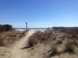 Seabrook Island-Boardwalk #3