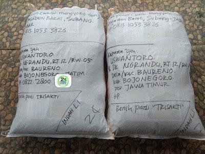 Benih pesanan USWANTORO Bojonegoro, Jatim.   (Sesudah Packing)