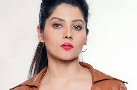Payel Dey , Biography, Profile, Age, Biodata, Family, Husband, Son, Daughter, Father, Mother, Children, Marriage Photos.