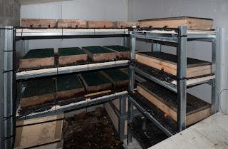 photo2- boites d'élevage des jeunes escargots