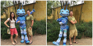 a bug's life flik animal kingdom