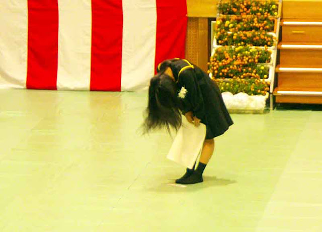 girl, diploma, bowing