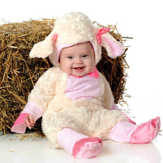 Funny Costume Babies Baby Photos Free Download