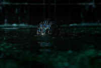 The Shape of Water Doug Jones Image 1 (1)