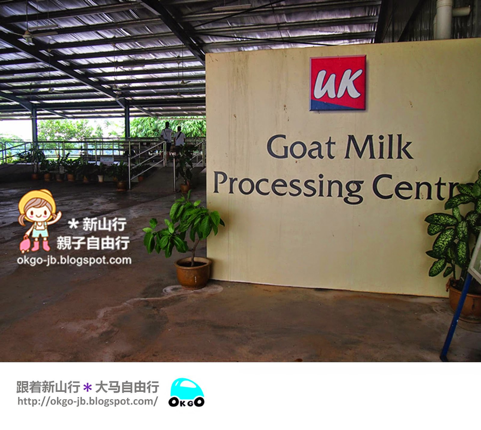 Kluang UK Farm goat milk processing