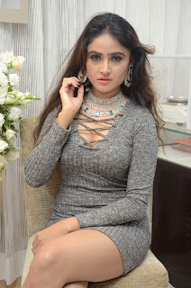 Sony Charishta At Jewellery Expo (14).JPG