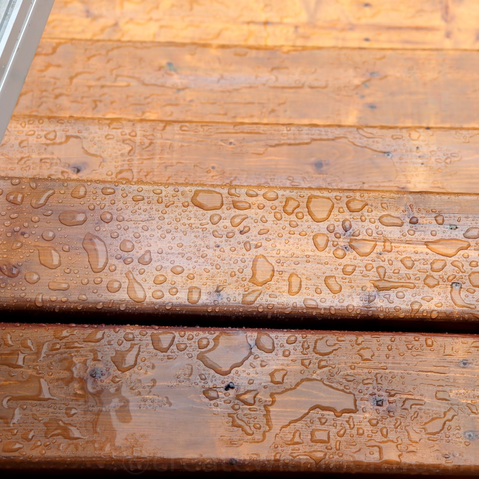 Create With Mom: Waterproofing our fence with Rust-Oleum