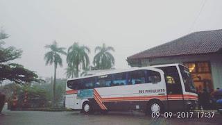 buspariwisatariau-aw6521