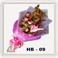 HB 09