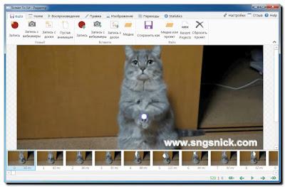 ScreenToGif 2.7.3 - Окно Редактора с записью