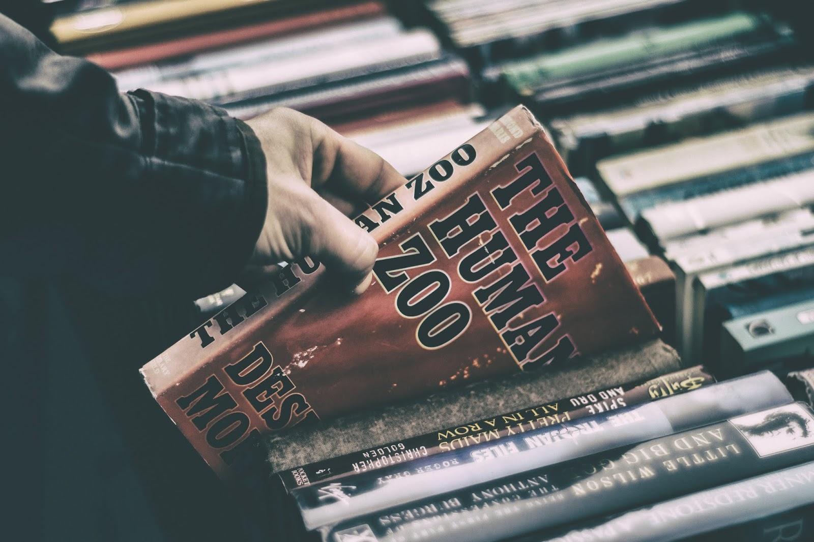 5 livros para curtir o mês de Outubro!