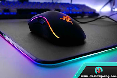 5 Best CSGO Gaming Mouse 2017