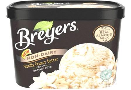 best Mint Chocolate Chip Ice Cream Brands