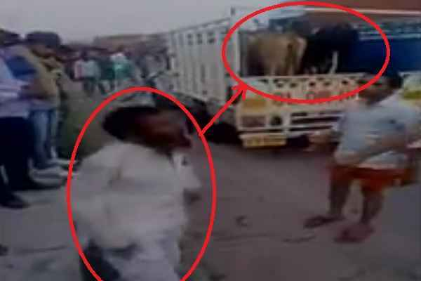 gau-taskari-in-alwar-rajasthan-1-gau-taskar-dead-after-beaten