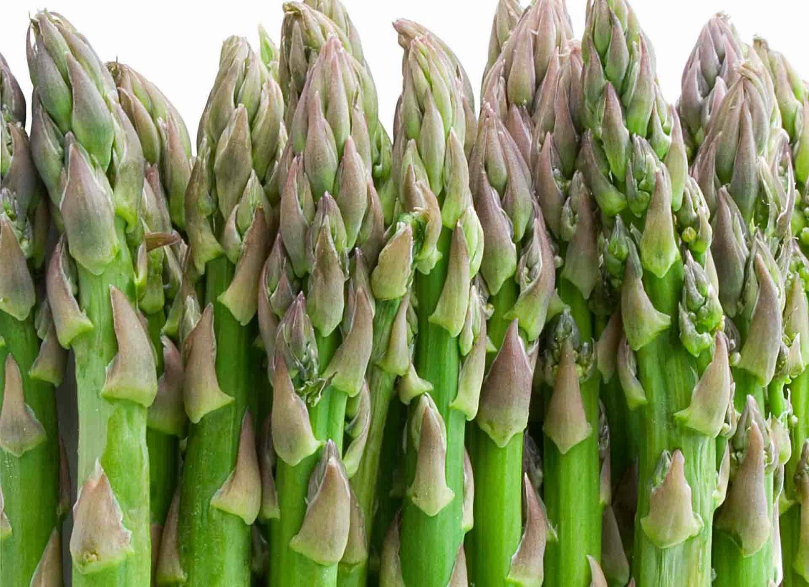 Khasiat dan Manfaat sayur Asparagus Bagi Kesehatan