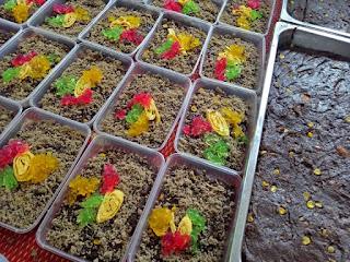 Bubur Asyura Terengganu Noxxa