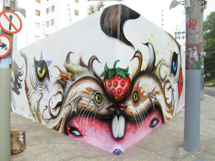 Andre Muniz Gonzaga. Street Art художник 13