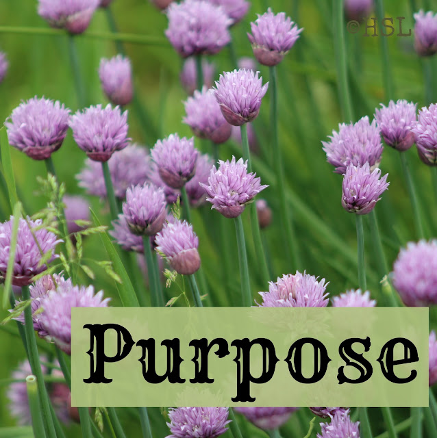 Purpose, five minute Friday writing prompts, God's purpose for my life