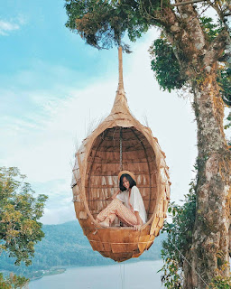 Rute Dan Lokasi Wanagiri Hidden Hills Buleleng Bali