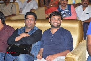 Nenu Local Audio Launch Stills  0329.JPG