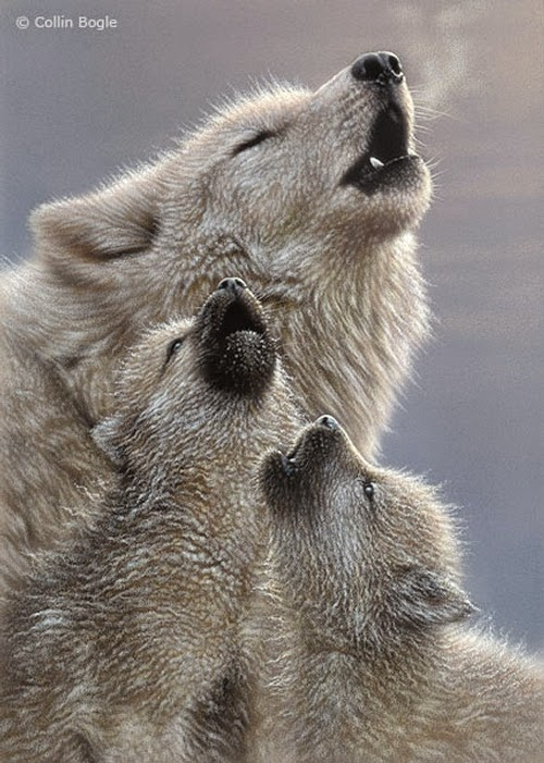 10-Howling-Wolf-Pups-Collin-Bogle-Animal-Wildlife-in-Art-www-designstack-co