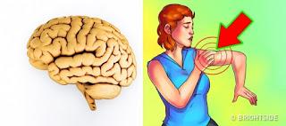 Jangan Abaikan Tanda Peringatan ini..! Berikut Cara Mengenali Penyakit Stroke Dan Gejalanya