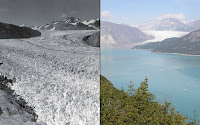 Photographs from the 1940s to 2000s show the drastic effect of climate change on our planets glaciers. Here are photos of Alaska's Muir glacier in August 1941 left and august 2004 (Credit: NASA) Click to Enlarge.