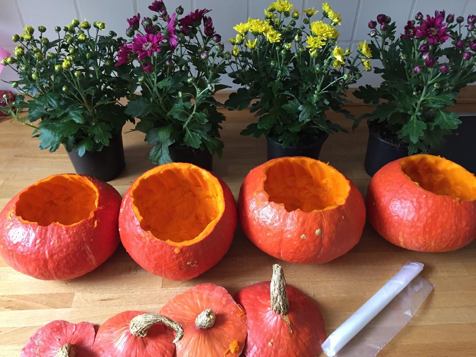 sticKUHlinchen: DIY Kürbis-Blume pünktlich zum Herbstanfang