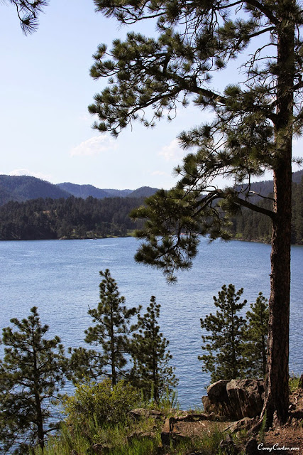 Pactola Lake - The Black Hills of South Dakota