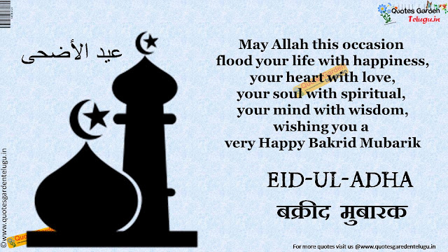 Best Bakrid 2015 Greetings Wishes Quotes Hindi 1136