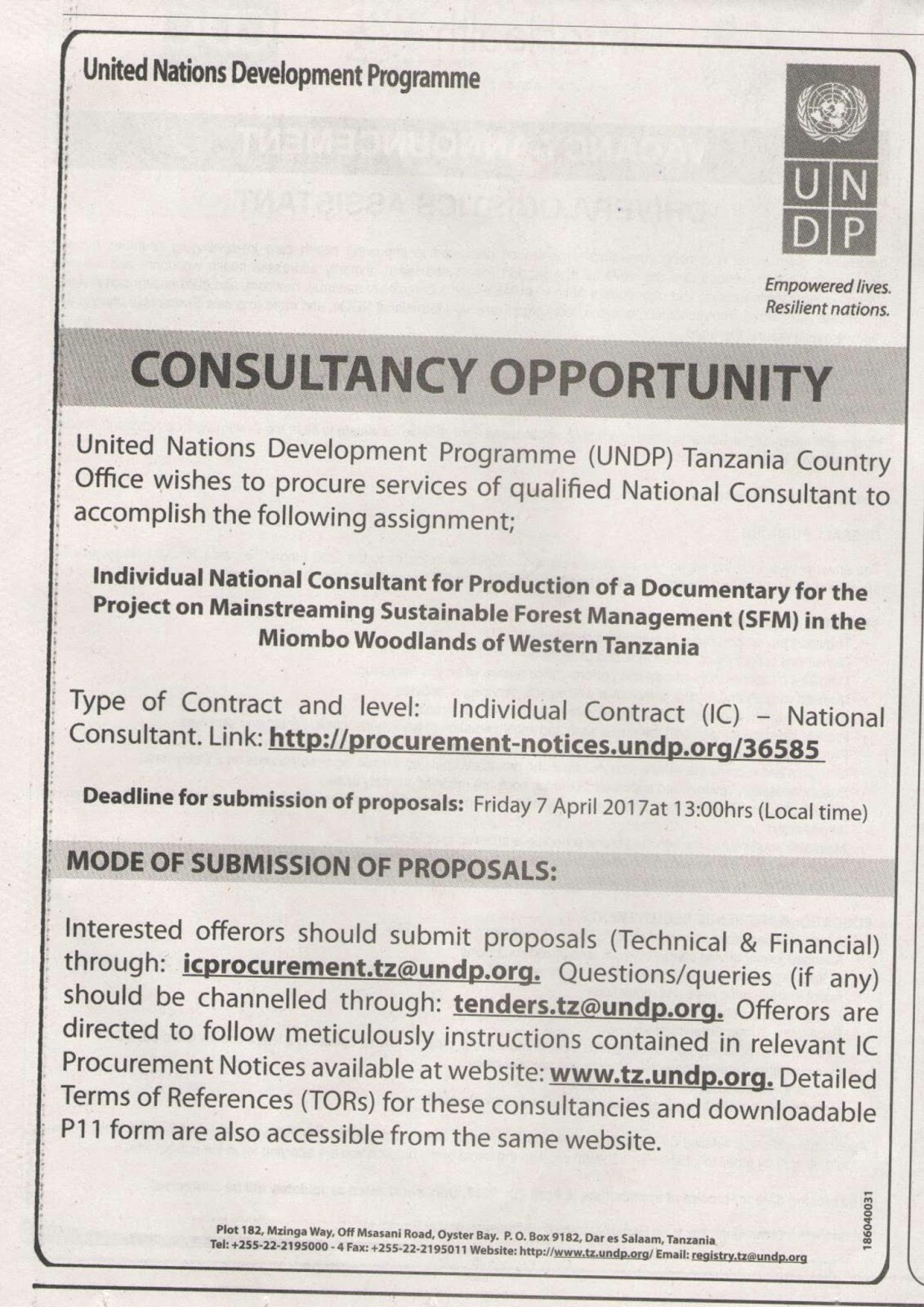CONSULTANCY OPPORTUNITY -UNDP | Find Your Dream Jobs Today | Tanzania