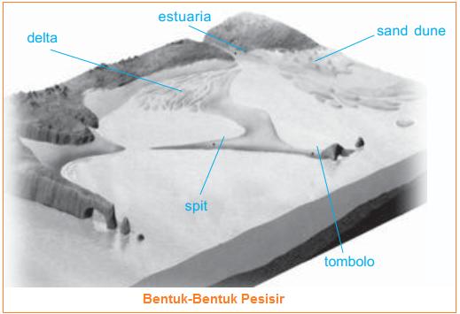 Bentuk-Bentuk Pesisir -  Estuaria, Delta, Fyord, Gumuk Pasir