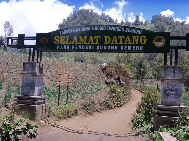 Inilah 4  Hutan Misterius Dan Angker Di Indonesia