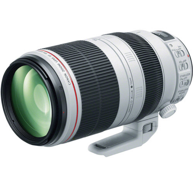 Canon 100-400mm f/4.5-5.6 Overview Camera 2019