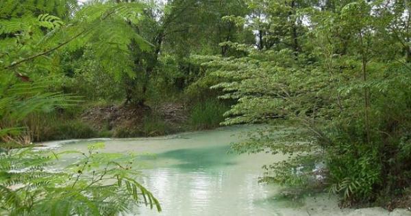 wisata di cirebon hits Wanawisata Ciwaringin
