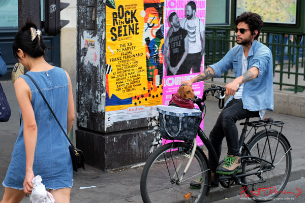 Man on bike with dog in a handlebar basket. If you're going to the Cité.. Shots from Paris on June 26 2017 for Street Fashion Sydney.