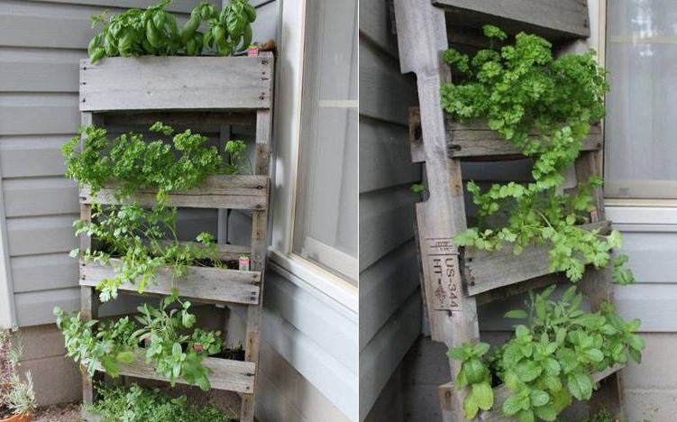 Reutilizar palets de madera en huerta casera for Jardin vertical con palets