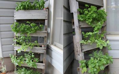 mini jardin vertical con palets de madera
