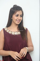 Nikki Galrani in a Brown Shining Sleeveless Gown at Nakshatram music launch ~  Exclusive 055.JPG