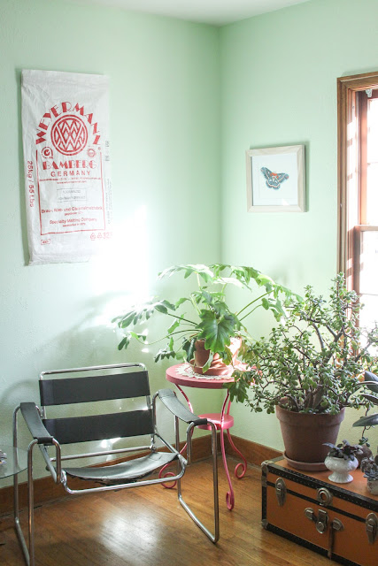 houseplants, home, decorating, Anne Butera, My Giant Strawberry