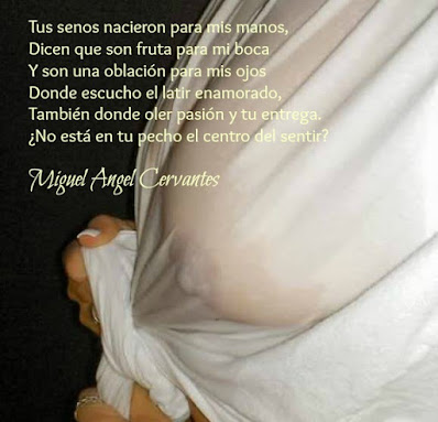 blogdepoesia-poesia-miguel-angel-cervantes-senos