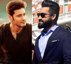 Why Mahesh and NTR's Fans Overjoyed?