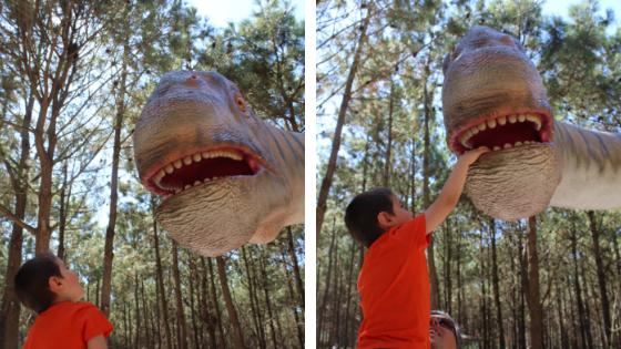 O Rodrigo a admirar um dos dinossauros do parque