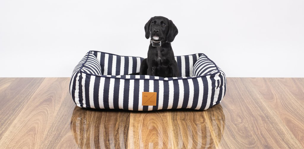 Labrador puppy sits in a Mog and Bone Bolster Bed in Hampstons navy and white stripes